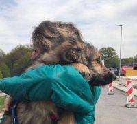 Animals new life e.V. Bilbo Zuhause gefunden
