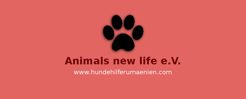 Animals-new-life-Hundevermittlung