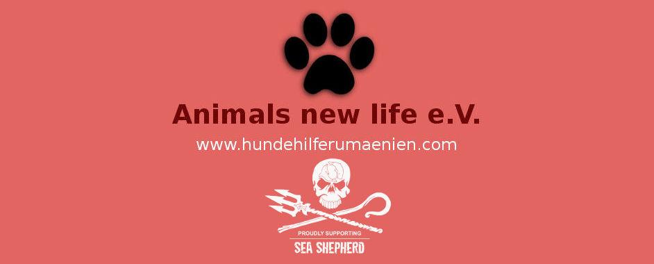Animals new life Hundevermittlung