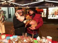 Weihnachtsmarkt 2016 Hofheim